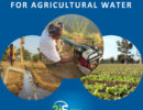 ico_Sahel-Irrigation-Initiative-(2iS)_Strategic-Framework-For-Agricultural-Water-In-The-Sahel-1